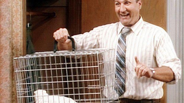 Al (Ed O'Neill) glaubt, eine geniale Idee zu haben. Wenn Kelly und Bud immer...