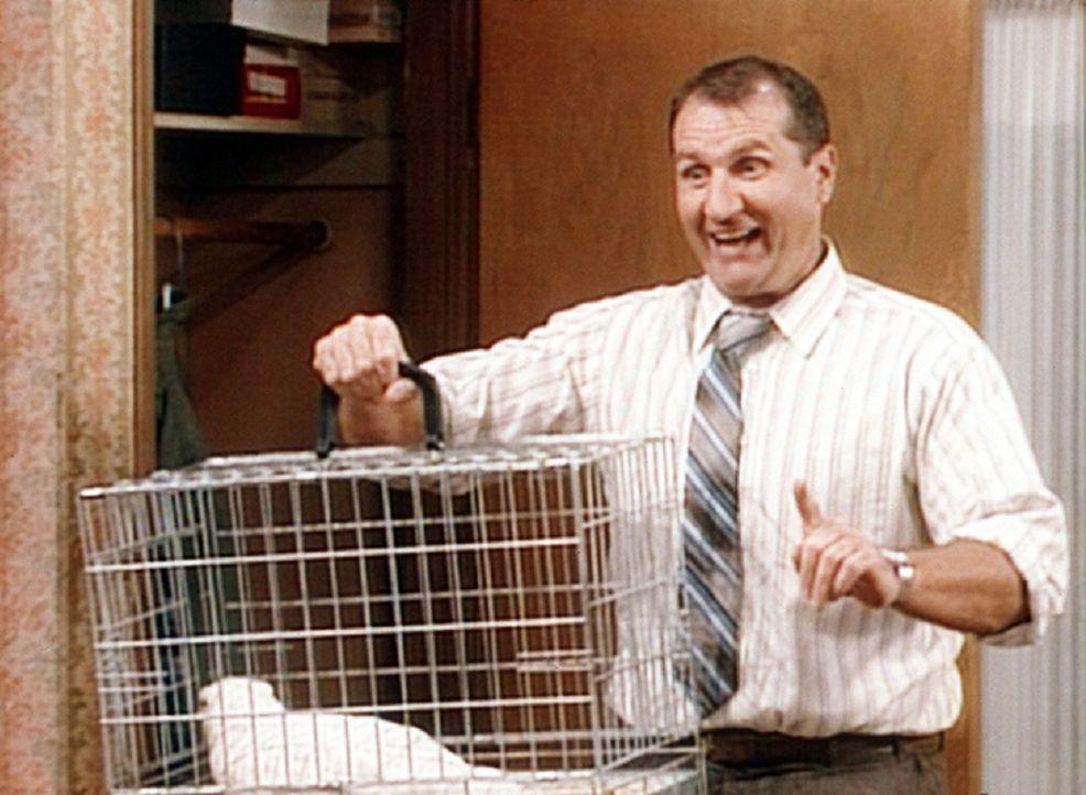 Al (Ed O'Neill) glaubt, eine geniale Idee zu haben. Wenn Kelly und Bud immer ein lebendiges Huhn im Auto mitnehmen, können sie es günstig als land... - Bildquelle: Columbia Pictures