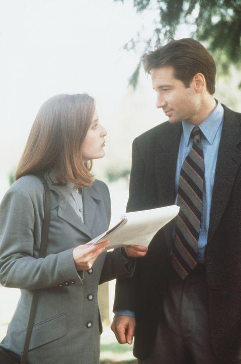 Die FBI-Agenten Fox Mulder (David Duchovny, r.) und Dana Scully (Gillian Anderson, l.) untersuchen den mysteriösen Tod von vier Jugendlichen. - Bildquelle: TM +   Twentieth Century Fox Film Corporation. All Rights Reserved.
