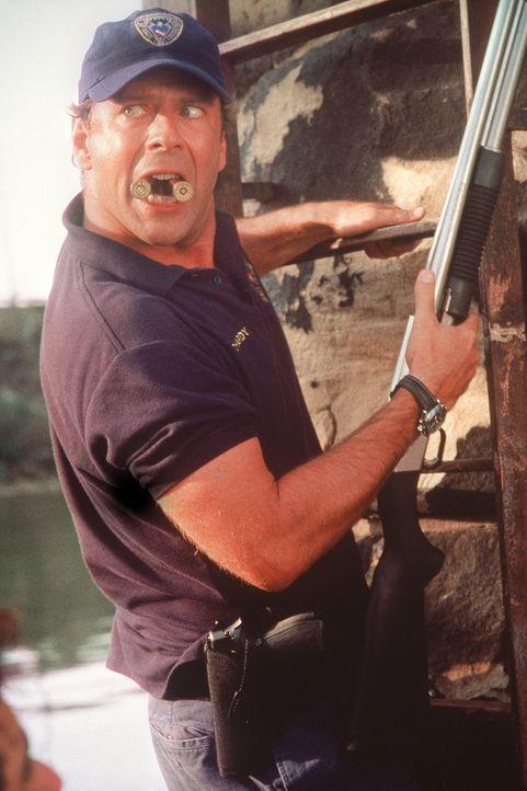 Weil Cop Tom Hardy (Bruce Willis) einen bestialischen Serienkiller in den eigenen Reihen vermutet, wird er zur Wasserschutzpolizei abgeschoben. Als... - Bildquelle: Columbia Pictures