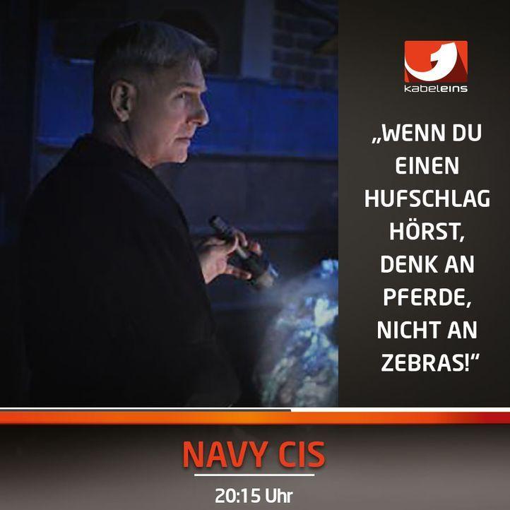 NCIS150103
