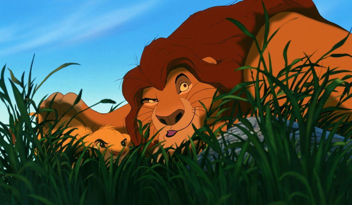 Mufasa (r.) kann seinem Sohn Simba (l.) noch einiges beibringen ... - Bildquelle: Disney