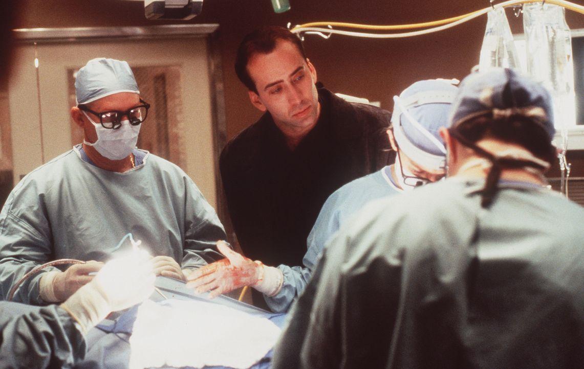 Eigentlich ist es die Aufgabe des Schutzengels Seth (Nicolas Cage, M.), den Sterbenden den Weg ins nächste Leben zu erleichtern. Doch der verzweife... - Bildquelle: Warner Bros.
