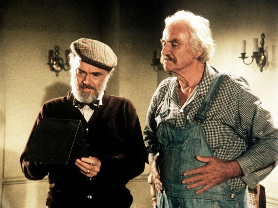 Der alte Mason Beardsley (John Beal, l.) ist nach fünf Jahren wieder nach Walton's Mountain zurückgekehrt. Er erzählt Sam (Will Geer, r.) von seinen... - Bildquelle: American Broadcasting Company