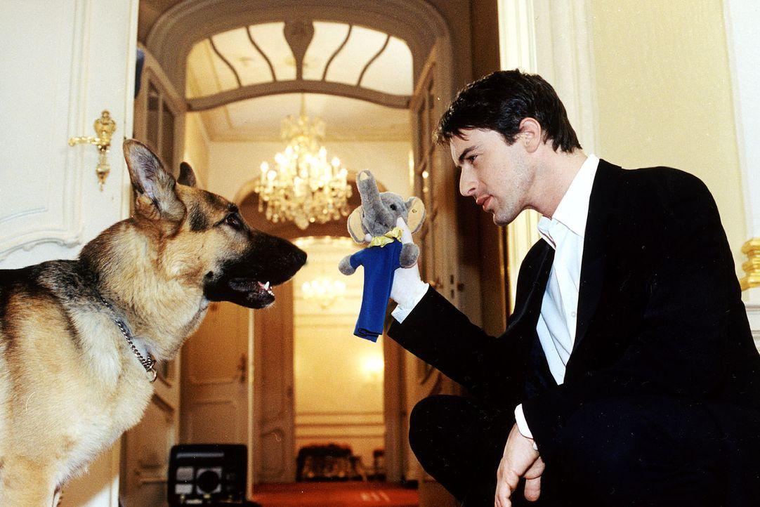 Kommissar Brandtner (Gedeon Burkhard, r.) lässt Rex an einem Spielzeug des entführten Babys schnüffeln. - Bildquelle: Ali Schafler Sat.1