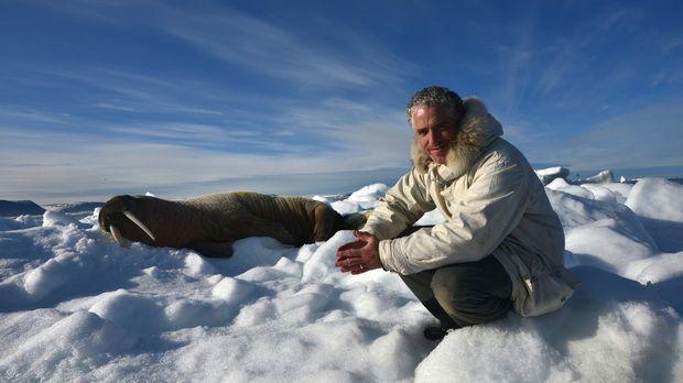 Bei seiner ganz besonderen Reise durch Schnee und Eis der Svalbard Inseln tri...