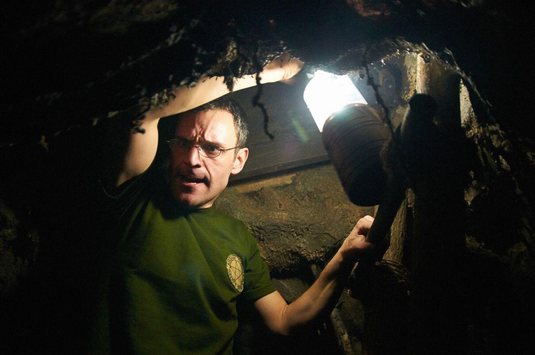 In den Tiefen eines Bunkers hält Vinson (Bild) die junge Elisabeth gefangen ... - Bildquelle: Ian Watson Cineflix 2014