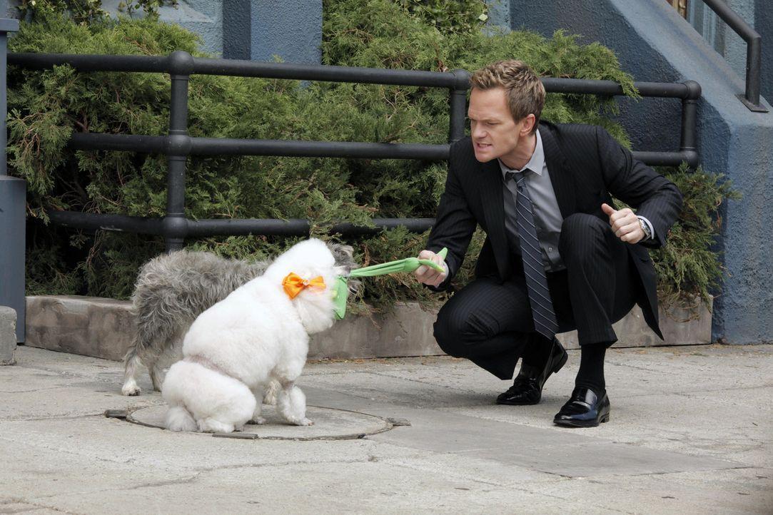 Während Ted und Victoria einen Wendepunkt in ihrer Beziehung erreichen, möchte Barney (Neil Patrick Harris) einen Hund zu seinem Begleiter beim Frau... - Bildquelle: 2012 Twentieth Century Fox Film Corporation. All rights reserved.