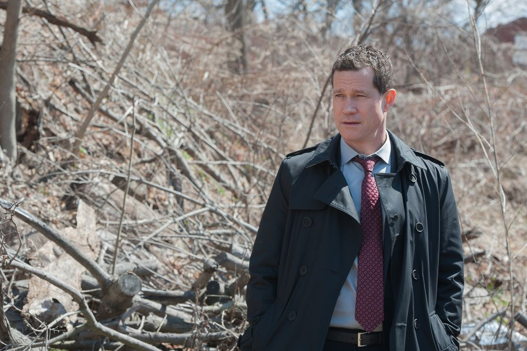 Sucht den Mörder eines Studienabbrechers: Al (Dylan Walsh) ... - Bildquelle: 2014 Broadcasting Inc. All Rights Reserved.