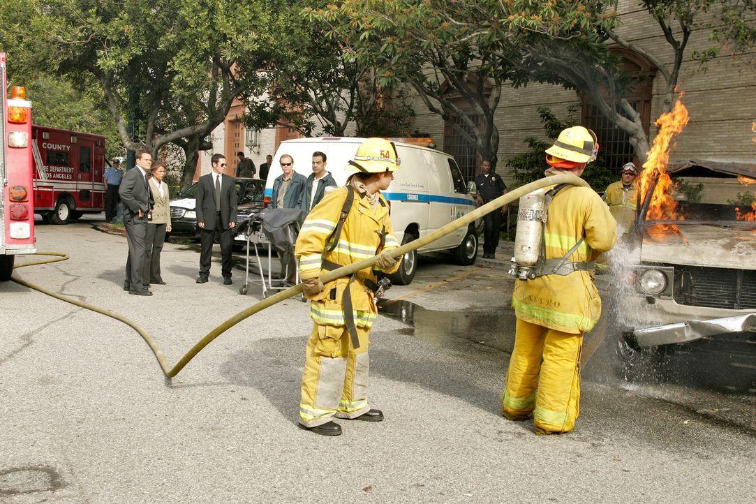 Stehen vor einem Rätsel: Don (Rob Morrow, 4.v.l.), Colby (Dylan Bruno, 2.v.l.) und Agent Jennifer Malloy (Lisa Vidal, 3.v.l.) ... - Bildquelle: Paramount Network Television