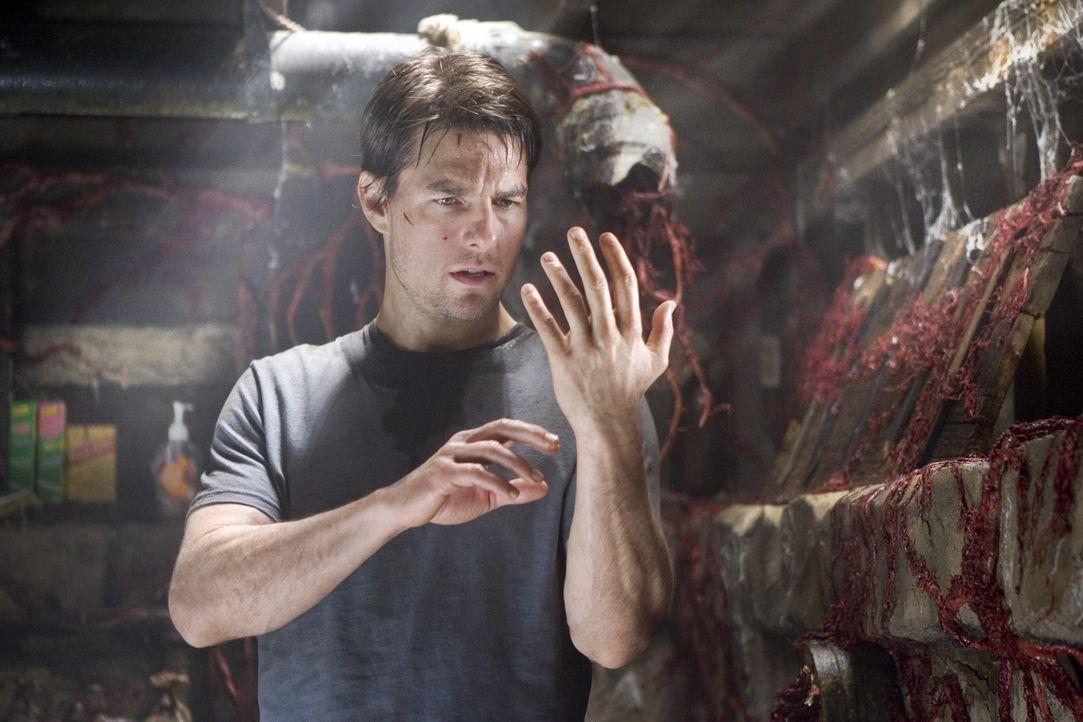 Aus dem Boden wächst etwas, das Ray (Tom Cruise) noch nie zuvor gesehen hat. Und es hat mörderische Kräfte ... - Bildquelle: 2004 Paramount Pictures All Rights Reserved.