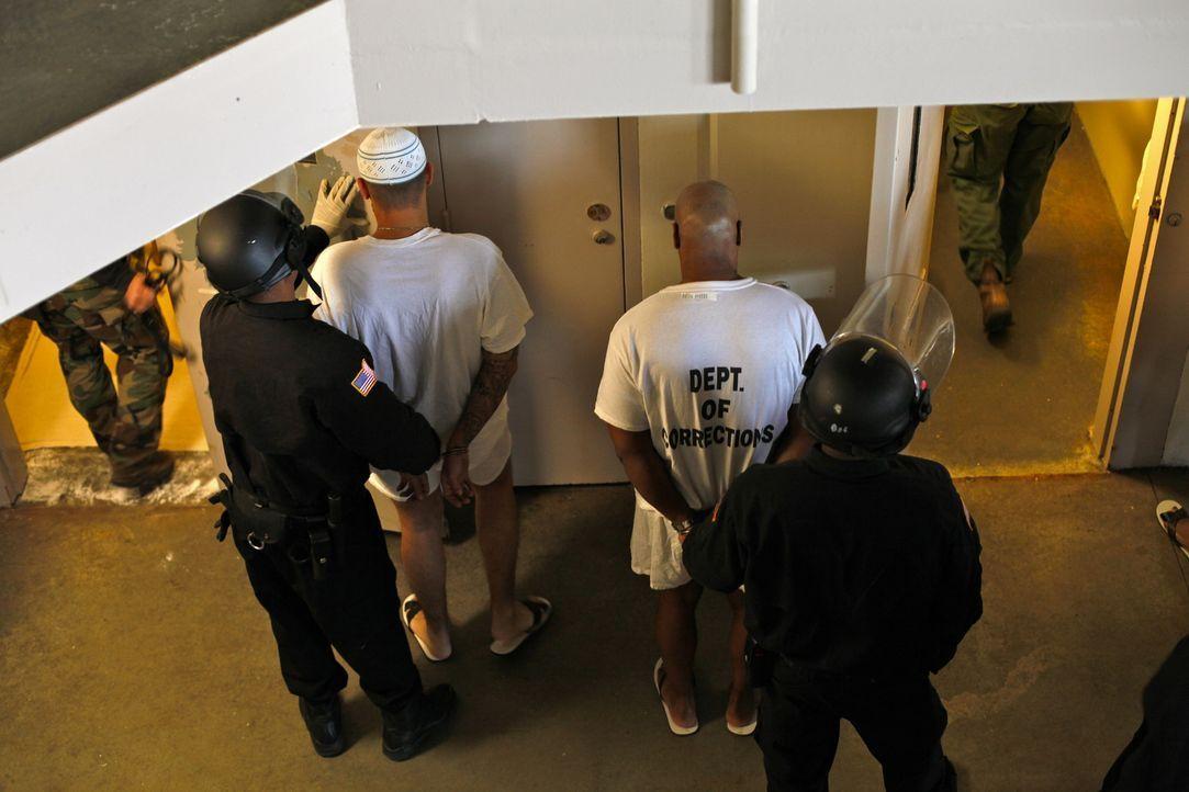 Innerhalb von sechs Monaten gab es im Smith State Prison drei Morde ...