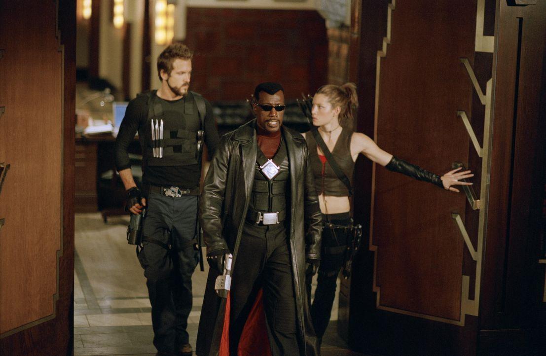 Gemeinsam versuchen Vampire und ihre Jäger, dem überaus gefährlichen Grafen Dracula den Garaus zu machen: Blade (Wesley Snipes, M.), Abigail Whis... - Bildquelle: New Line Cinema