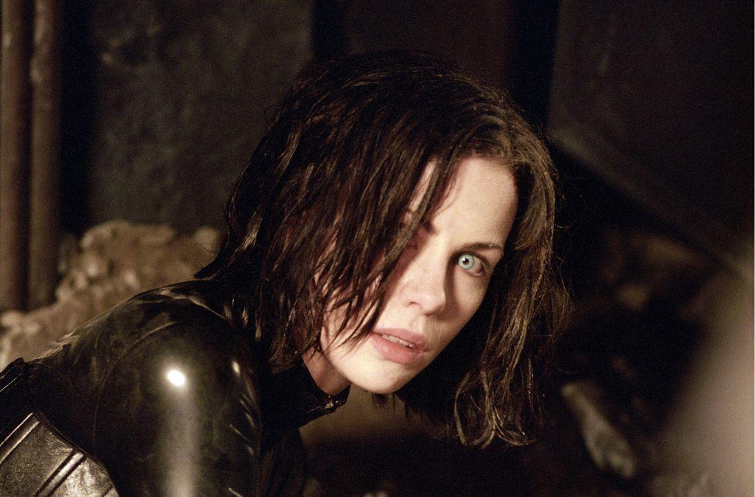 Seit vielen Jahren gehört die attraktive Selene (Kate Beckinsale) den Vampiren an, nachdem ihre Familie von Werwölfen ausgelöscht wurde. Nachts b... - Bildquelle: TMG
