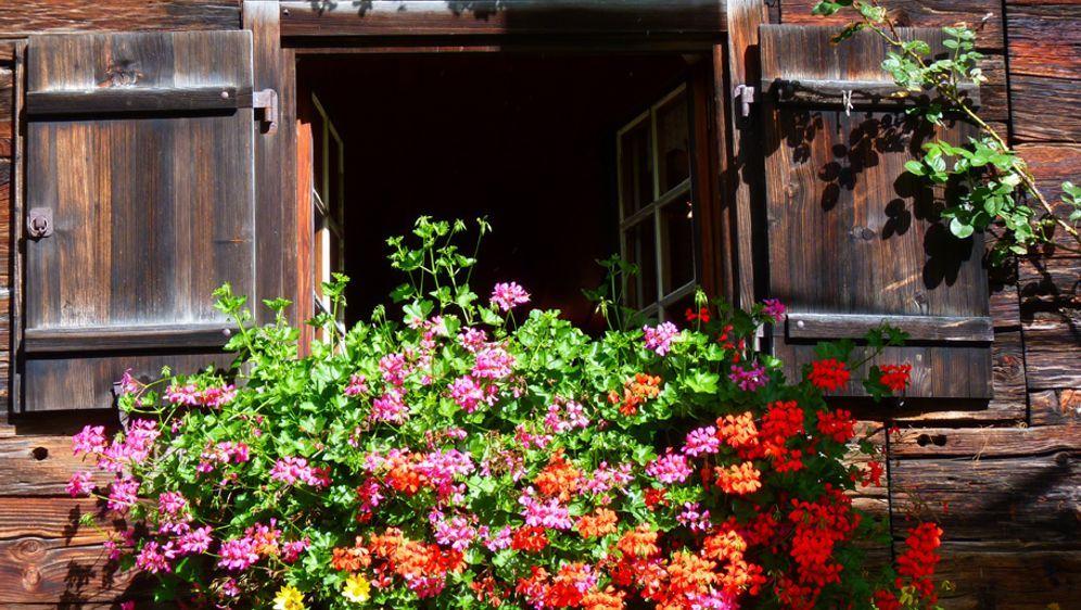 balkonk sten gestalten verzieren und bepflanzen sat 1 ratgeber. Black Bedroom Furniture Sets. Home Design Ideas