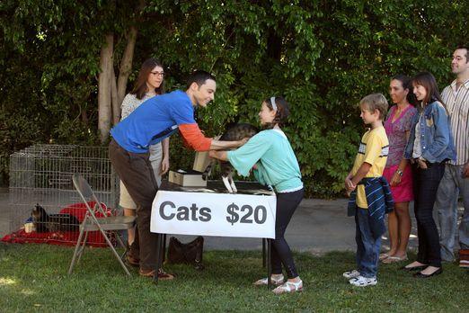 The Big Bang Theory - Nachdem sich die Katzen von Sheldon (Jim Parsons, 2.v.l...
