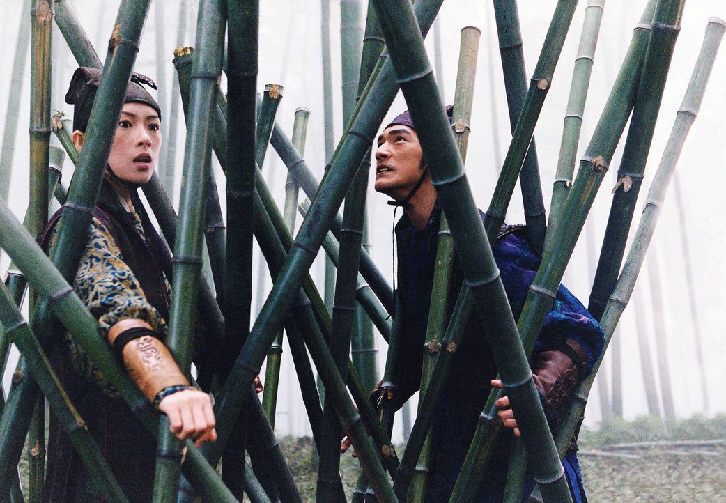 Ein Regen von Bambuslanzen geht auf das Paar nieder, bis Mei (Zhang Ziyi, l.) und Jin (Takeshi Kaneshiro, r.) in der Falle sitzen und weder vor- noc... - Bildquelle: Constantin Film