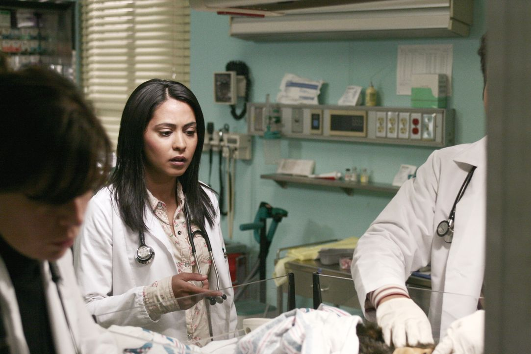 Clemente, der neue Oberarzt, zieht Abby (Maura Tierney, l.) und Neela (Parminder Nagra, M.) zu einer ganz besonderen Behandlung hinzu ... - Bildquelle: Warner Bros. Television