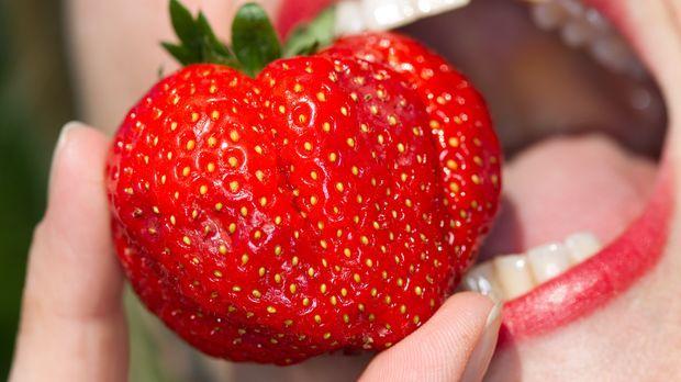 erdbeeren fettverbrennung