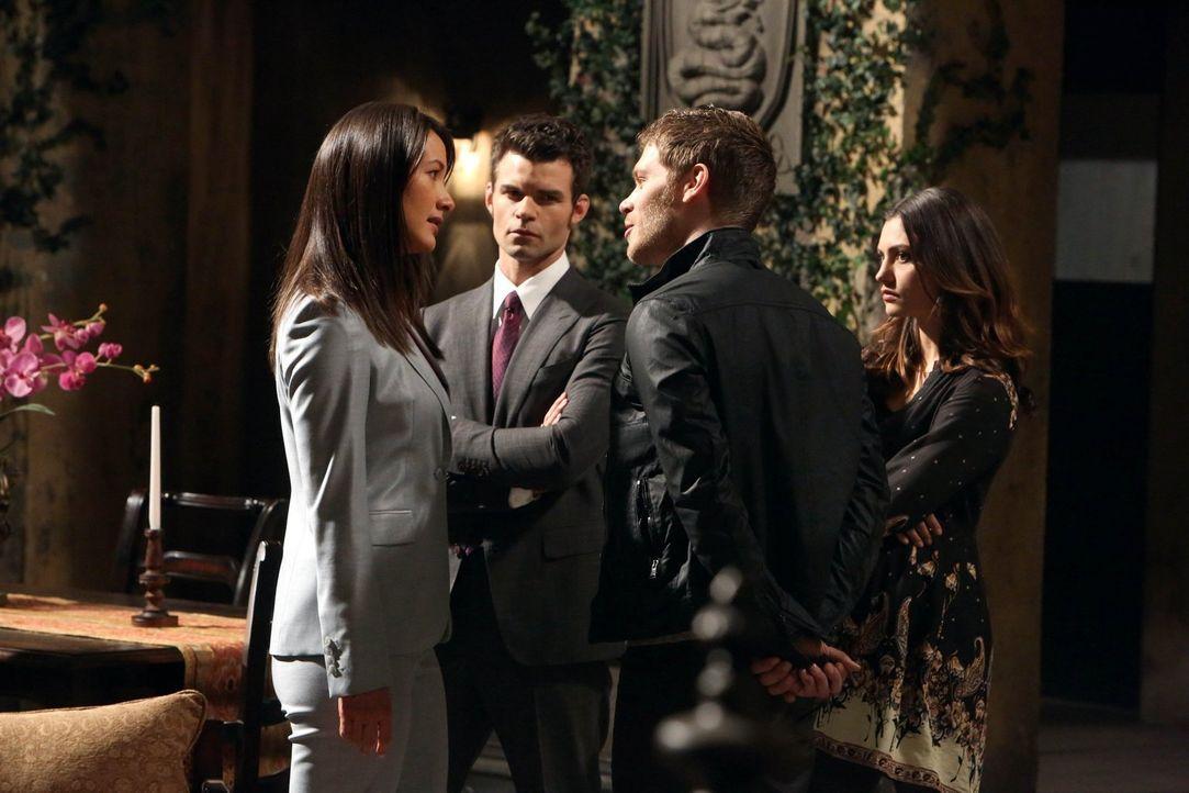 Francesca (Peta Sergant, l.) hütet ein Geheimnis, das auch für Elijah (Daniel Gillies, 2.v.l.), Klaus (Joseph Morgan, 2.v.r.) und Hayley (Phoebe Ton... - Bildquelle: Warner Bros. Television