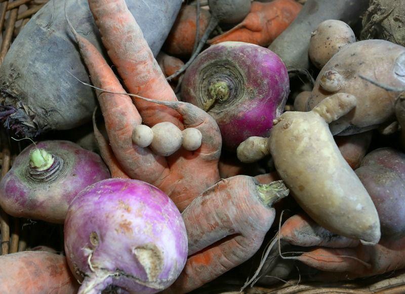 3. Gib krummem Gemüse eine Chance!Eine Menge an Lebensmitteln landet im Müll... - Bildquelle: dpa - Picture Alliance