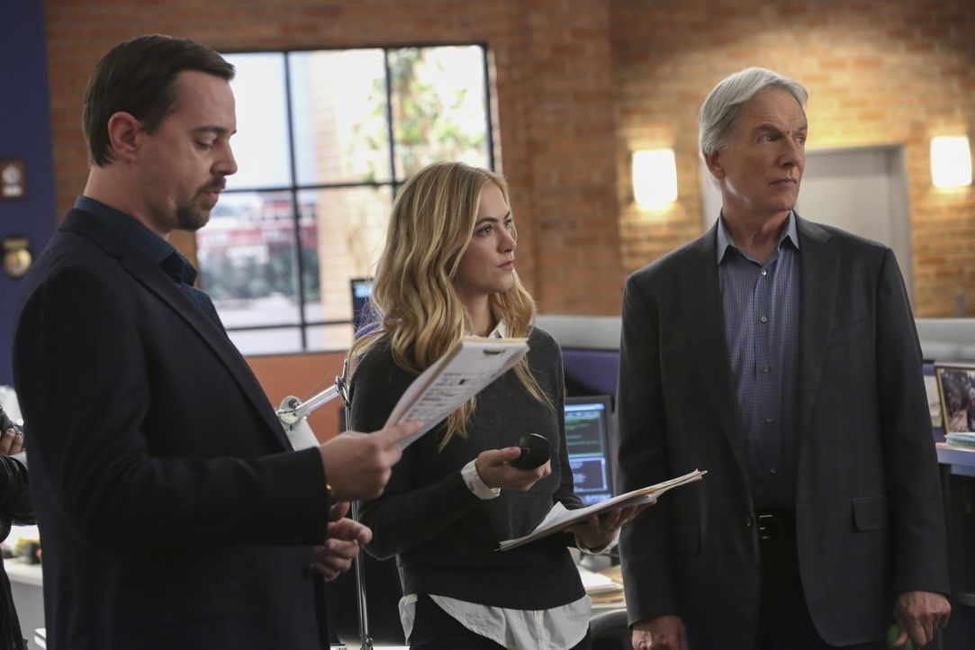 Während das Auffinden einer verwesten Leiche Fragen für das NCIS-Team (Emily Wickersham, M. und  Mark Harmon, r.) aufwirft, hat McGee (Sean Murray,... - Bildquelle: Patrick McElhenney 2017 CBS Broadcasting, Inc. All Rights Reserved.