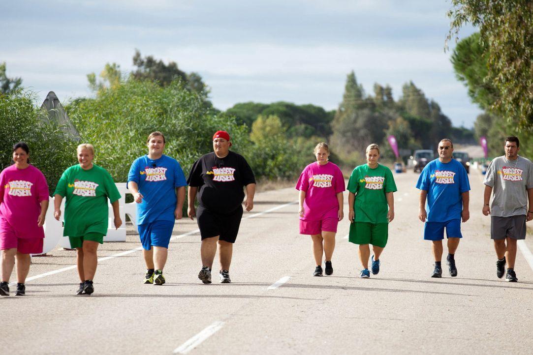 Eine weitere harte Woche liegt vor den Kandidaten (v.l.n.r.) Helga, Sandy, Marc, DaDon, Nicole, Sabrina, Ralf und André ... - Bildquelle: Enrique Cano SAT.1