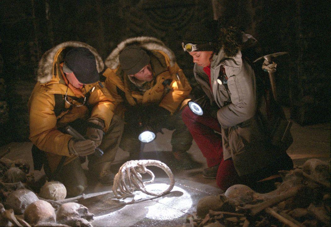 In der antiken Pyramide unter dem ewigen Eis machen (v.l.n.r.) Miller (Ewen Bremner), Sebastian (Raoul Bova) und Lex (Sanaa Lathan) eine todbringend... - Bildquelle: 2004 Twentieth Century Fox Film Corporation. All rights reserved.