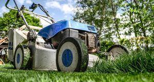Ohne regelmäßiges Stutzen kein schönes Grün: Rasenmähen ist wichtiger Bestand...