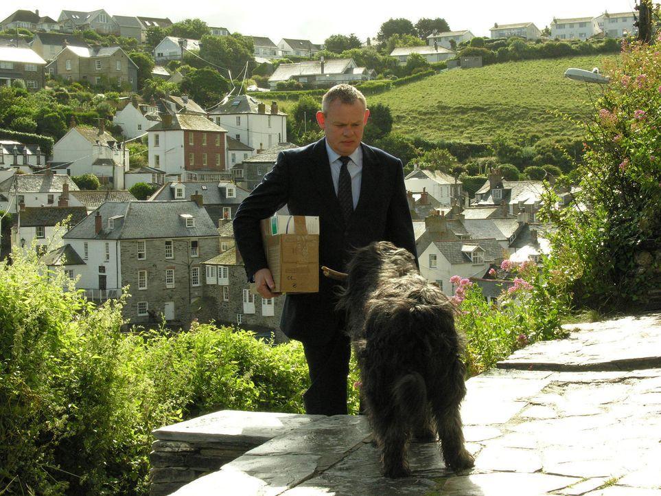 Auch ein alter Hund kann scharfe Zähne haben - wie Doc Martin (Martin Clunes) schmerzhaft feststellen muss ... - Bildquelle: BUFFALO PICTURES/ITV