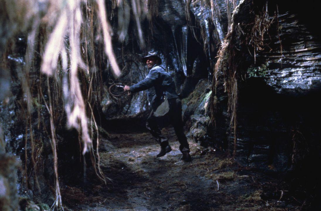 Archäologieprofessor Indiana Jones (Harrison Ford) blickt wieder einmal der Gefahr ins Auge ... - Bildquelle: Paramount Pictures International