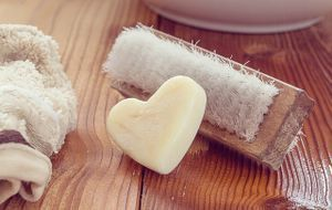 Handbürste