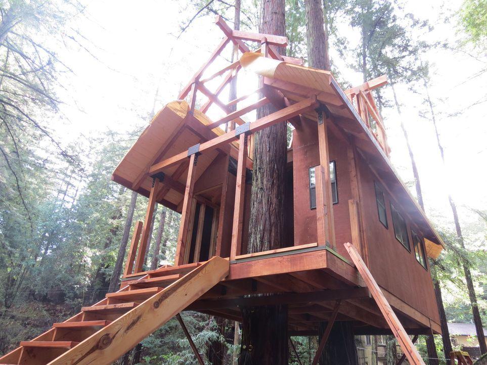Ein neues Abenteuer erwartet die Treehouse Guys in den Bäumen von Guerneville, CA, wo eine vier-köpfige Familie von einem Erholungsort hoch oben in... - Bildquelle: 2016,DIY Network/Scripps Networks, LLC. All Rights Reserved.