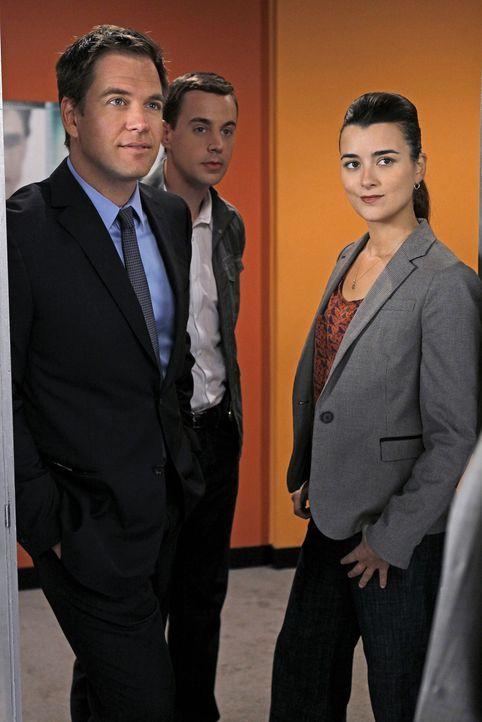 Ein neuer Fall beschäftigt Ziva (Cote de Pablo, r.), McGee (Sean Murray, M.) und DiNozzo (Michael Weatherly, l.) ... - Bildquelle: CBS Television