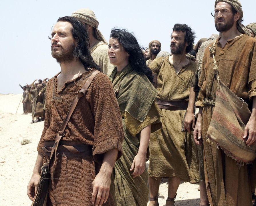 Gemeinsam mit seinem leiblichen Bruder Aaron (Linus Roache, l.) und seiner leiblichen Schwester Miriam (Susan Lynch, 2.v.l.) führt Moses sein Volk... - Bildquelle: Hallmark Entertainment