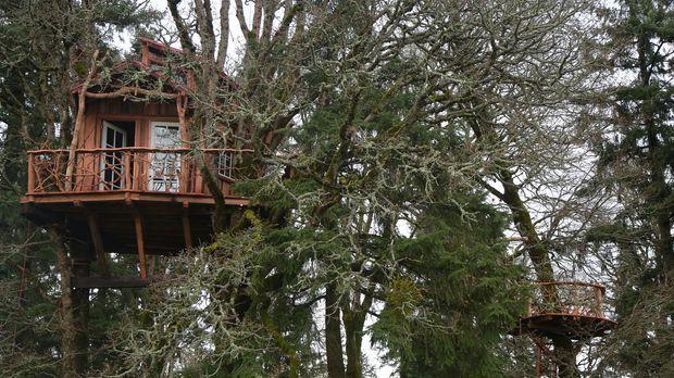 Die Baumhaus-Profis reisen durchs Land, um für Naturliebhaber maßgeschneidert...