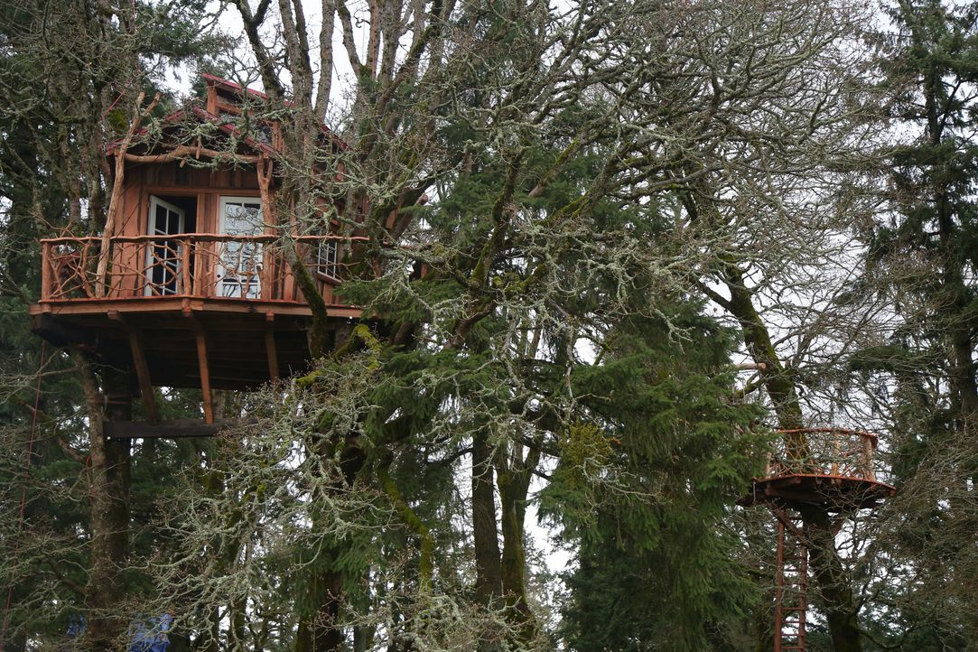 Die Baumhaus-Profis reisen durchs Land, um für Naturliebhaber maßgeschneiderte Baumhäuser zu bauen. Dieses Mal erschaffen sie in Oregon City in Oreg... - Bildquelle: 2015, DIY Network/Scripps Networks, LLC. All Rights Reserved.