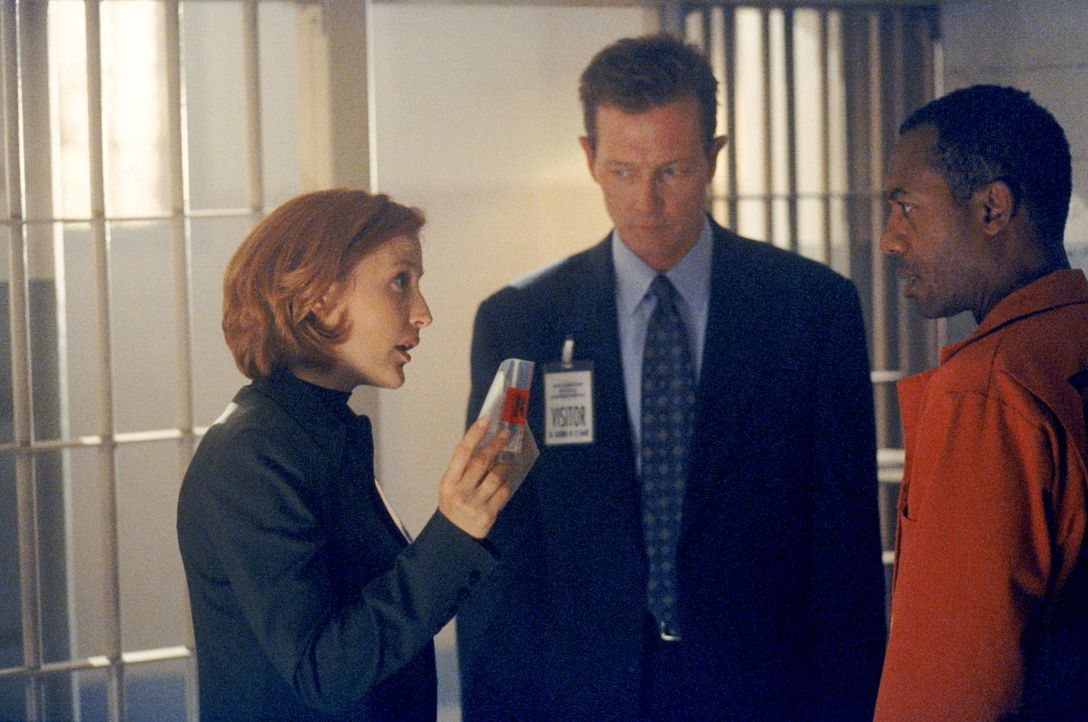 Scully (Gillian Anderson, l.) und Doggett (Robert Patrick, M.) halten den Staatsanwalt Martin Wells (Joe Morton, r.) für den Mörder seiner Frau. - Bildquelle: TM +   2000 Twentieth Century Fox Film Corporation. All Rights Reserved.