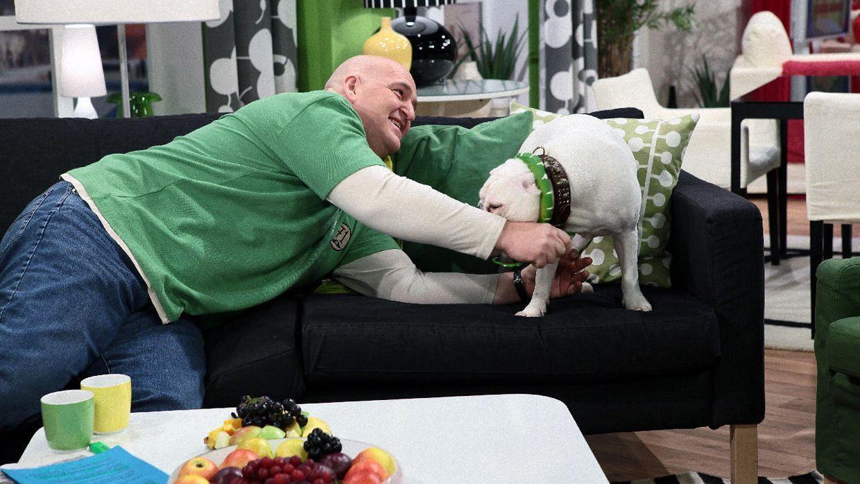 fruehstuecksfernsehen-studiohund-lotte-in-action-im-studio-077 - Bildquelle: Ingo Gauss