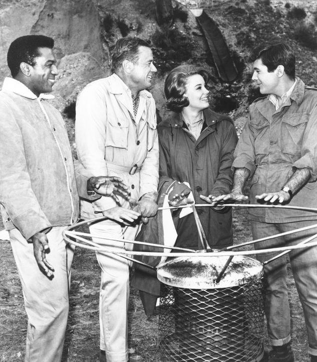 Ihre größten Feinde sind skrupellose Wilderer, welche die Tierpopulation im Wildpark gefährden: (v.l.n.r.) Mike (Hari Rhodes), Dr. Marsh Tracy (Mars... - Bildquelle: 2007 Warner Bros. All Rights Reserved.