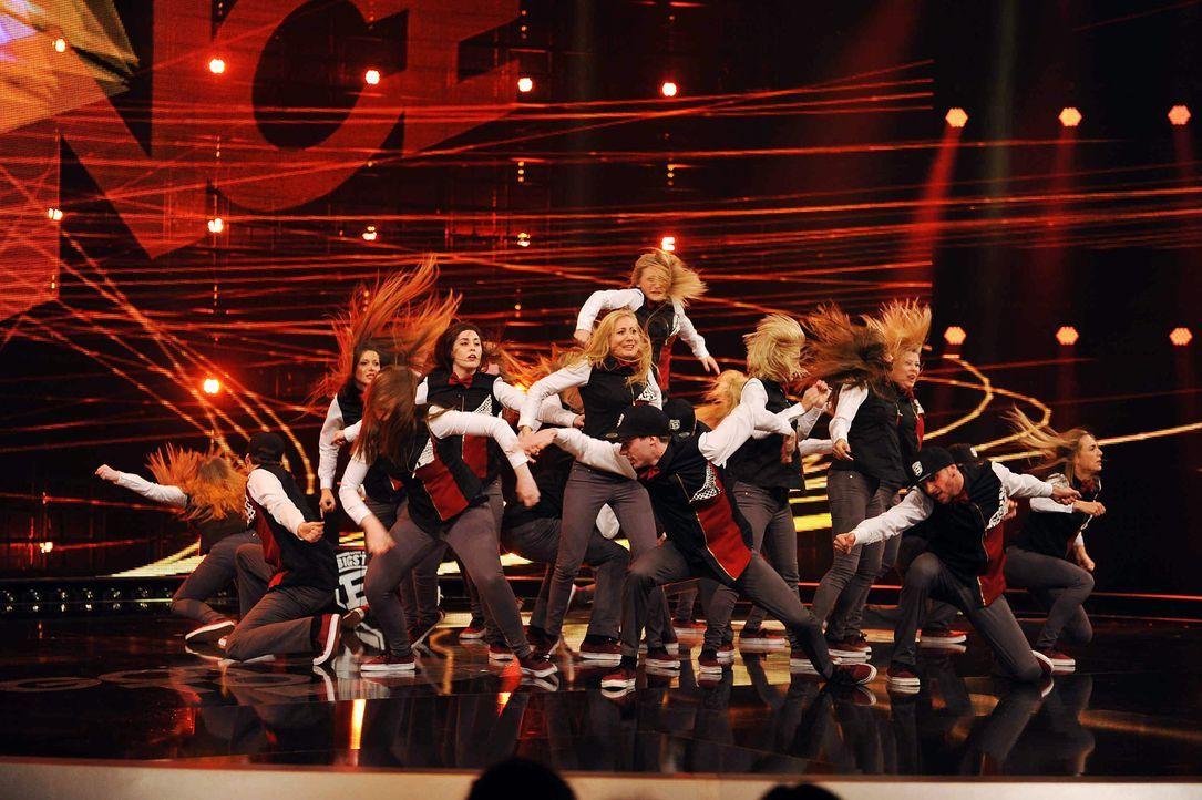 Got-To-Dance-Bigstyle-01-SAT1-ProSieben-Willi-Weber - Bildquelle: SAT.1/ProSieben/Willi Weber