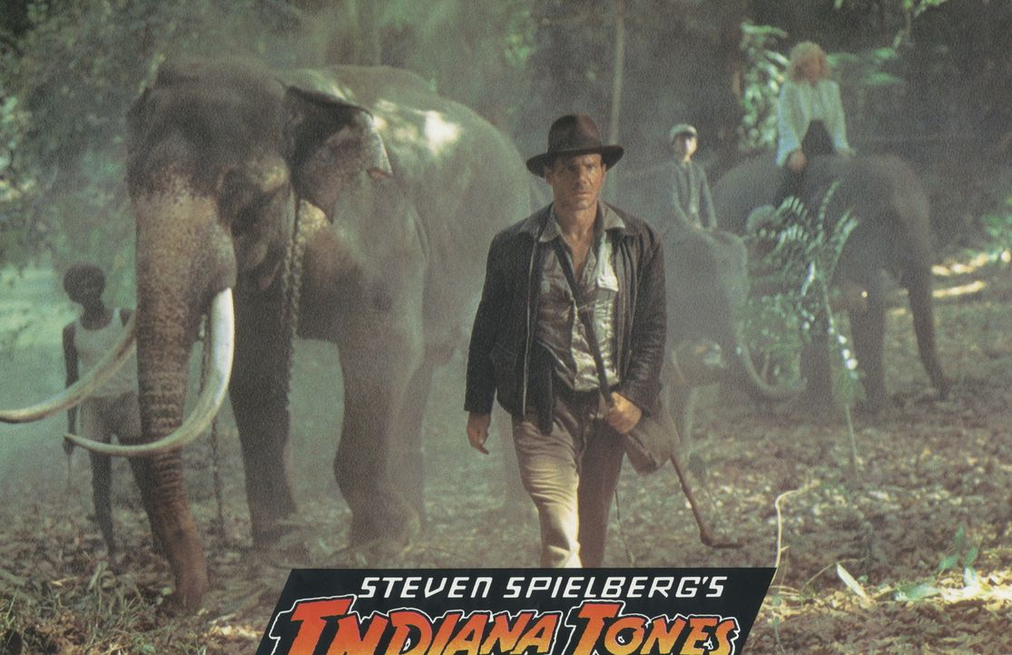 Selbst die Elefanten folgen nur einem: Indiana Jones (Harrison Ford) ... - Bildquelle: Paramount Pictures