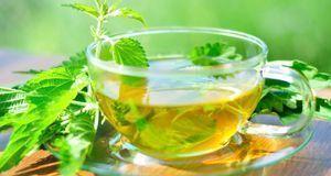 Gesunde Rezepte & Lebensmittel_2015_08_09_Harnsäure senken_Bild 3_fotolia...