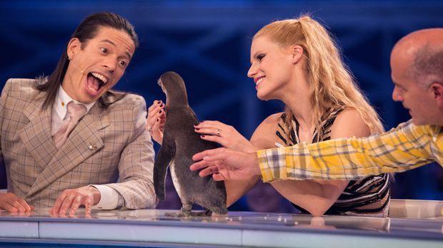 Begeistert der Pinguin die Jury am meisten? Jorge González (l.), Michelle Hun...