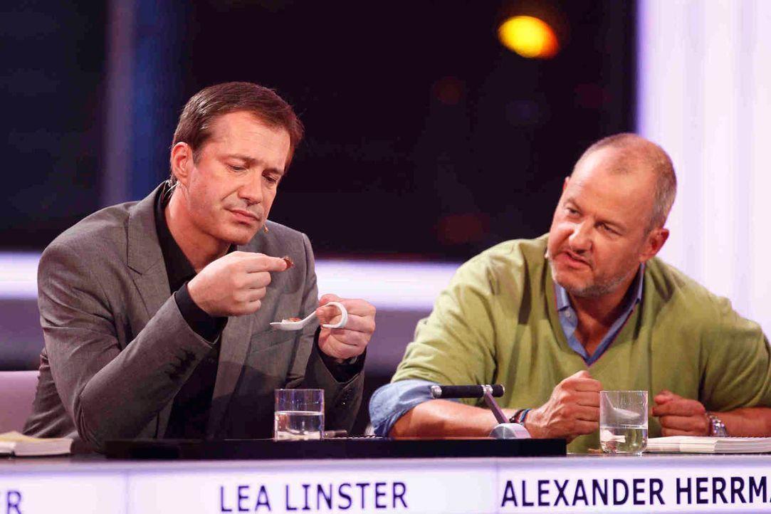 Die Spitzenköche Alexander Herrmann (l.) und Frank Rosin (r.) wissen nicht, wer das Gericht auf dem Löffel angerichtet hat, das sie probieren müssen... - Bildquelle: Guido Engels SAT.1