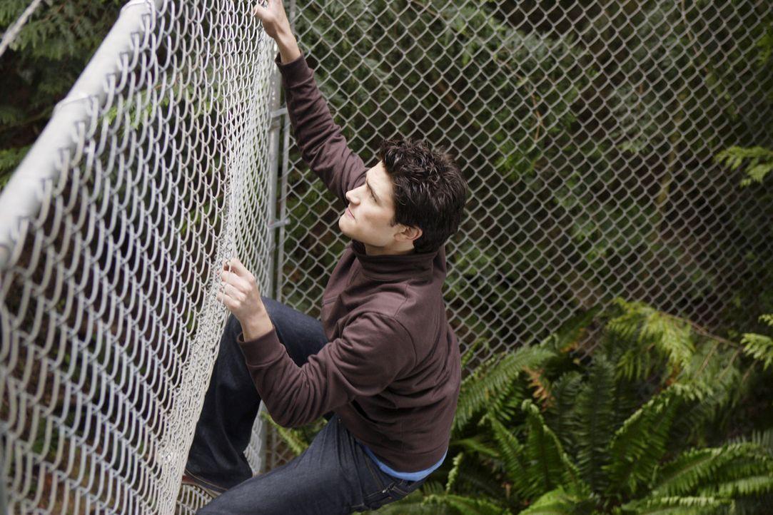 In einem unscheinbaren Waldgebiet warten einige Überraschungen auf Kyle (Matt Dallas) ... - Bildquelle: TOUCHSTONE TELEVISION