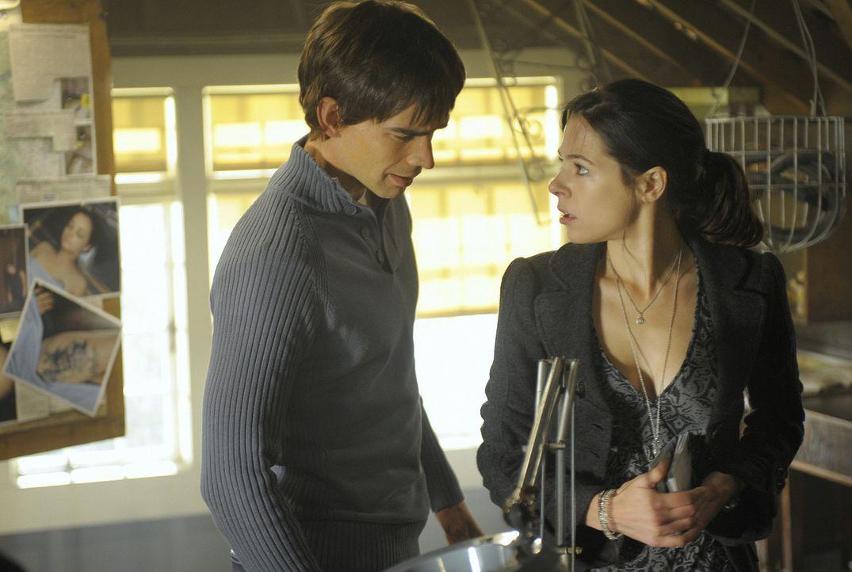 Henry (Christopher Gorham, l.) und Abby (Elaine Cassidy, r.) entdecken die Rechercheunterlagen des Sheriffs. Ist es möglich, dass der Mörder von A... - Bildquelle: 2009 CBS Studios Inc. All Rights Reserved.