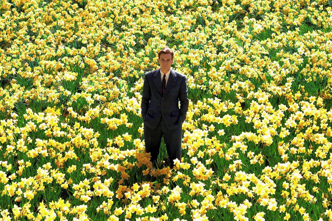Wenn man einen Mann wie Edward Bloom (Ewan McGregor) kennen, begreifen und lieben will, sollte man sich mit solchen Lappalien wie der Wahrheit und W... - Bildquelle: 2004 Sony Pictures Television International. All Rights reserved.