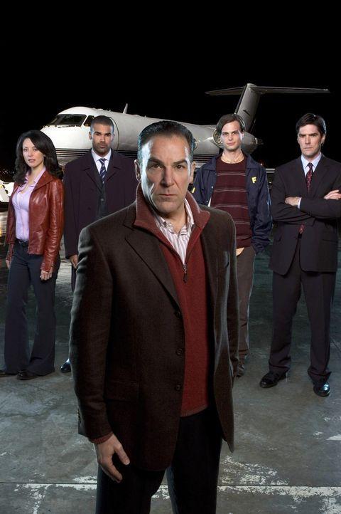 (1. Staffel) - Mitglieder der B.A.U. - eine FBI-Einheit, die sich mit verhaltensauffälligen Tätern beschäftigt: Special Agent Jason Gideon (Mandy Pa... - Bildquelle: Touchstone Television