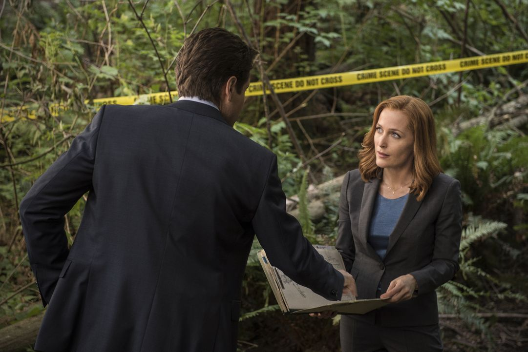 Als im Wald eine Leiche gefunden wird, werden Mulder (David Duchovny, l.) und Scully (Gillian Anderson, r.) hinzugezogen, nachdem zwei Junkies behau... - Bildquelle: 2016 Fox and its related entities.  All rights reserved.